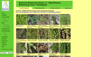 www.botanik-bochum.de