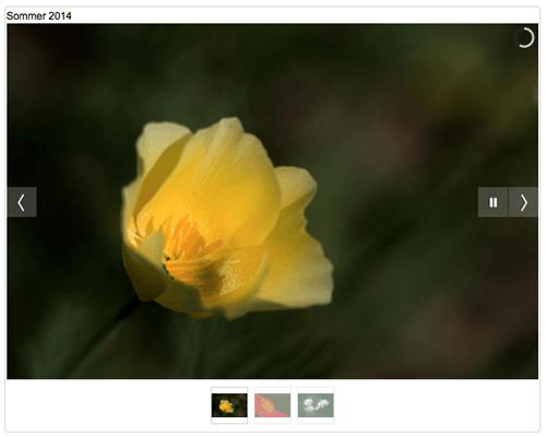 Homepage mit Bildergalerie