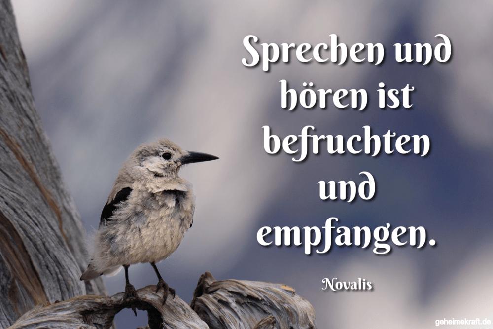 Sprechen und hören ist befruchten und empfangen.