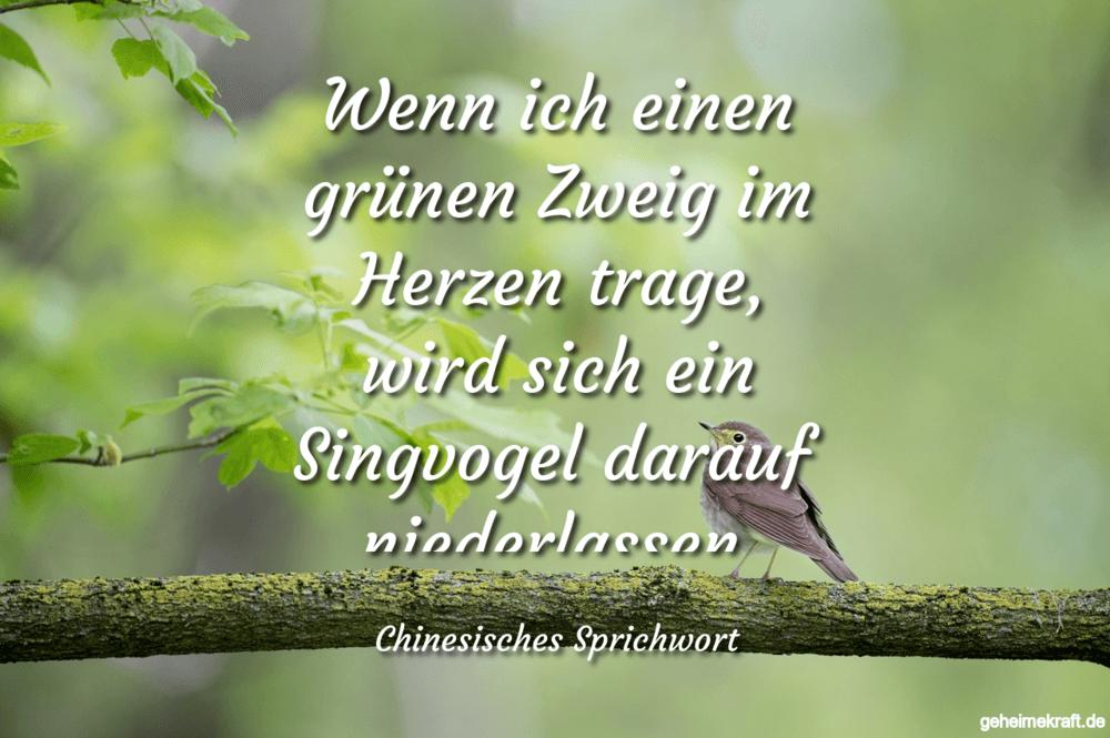 Wenn ich einen grünen Zweig im Herzen trage,...