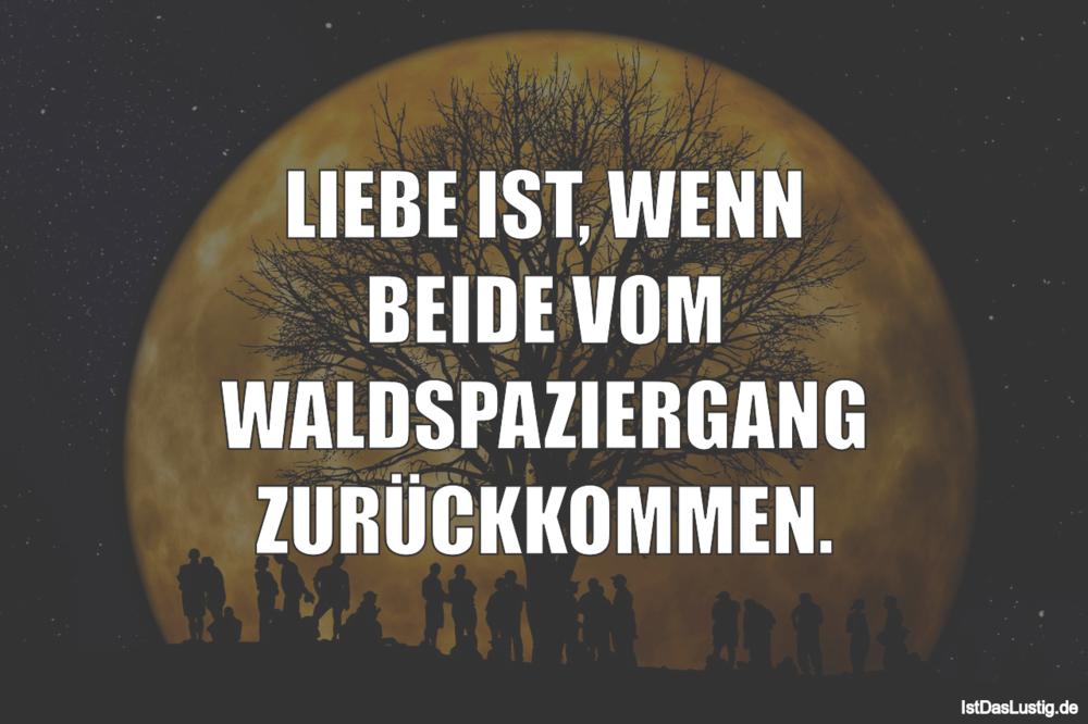 Lustiger BilderSpruch - LIEBE IST, WENN BEIDE VOM WALDSPAZIERGANG...