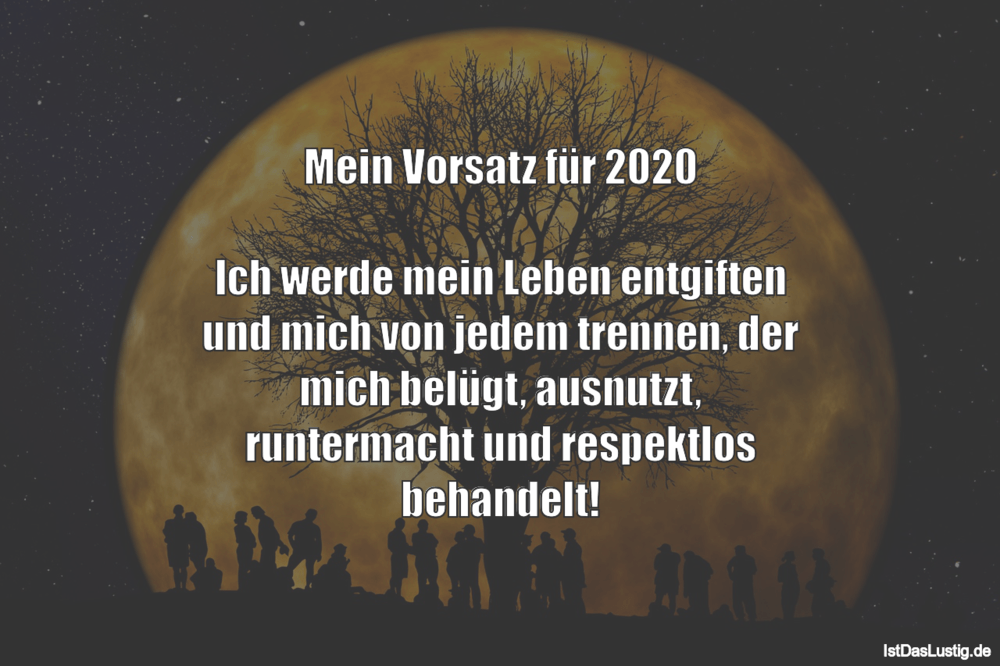 Lustiger BilderSpruch - Mein Vorsatz für 2020  Ich werde mein Leben...