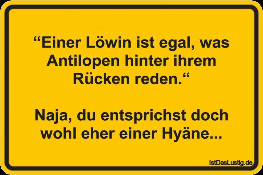 """Lustiger BilderSpruch - """"Einer Löwin ist egal, was Antilopen hinter..."""