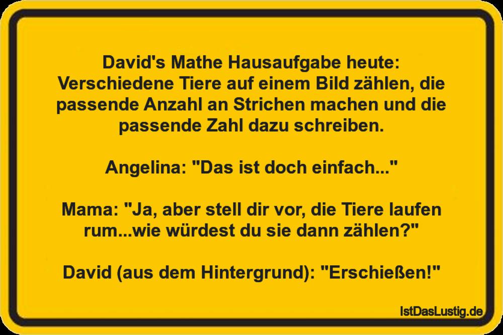 Lustiger BilderSpruch - David's Mathe Hausaufgabe heute: Verschiedene...