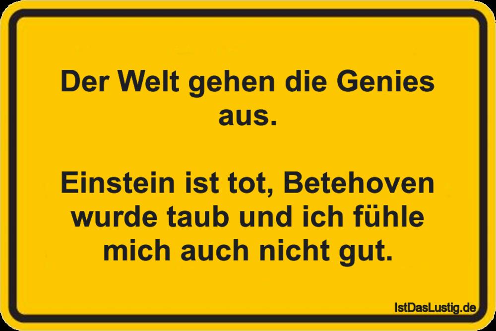 Lustiger BilderSpruch - Der Welt gehen die Genies aus.  Einstein ist...