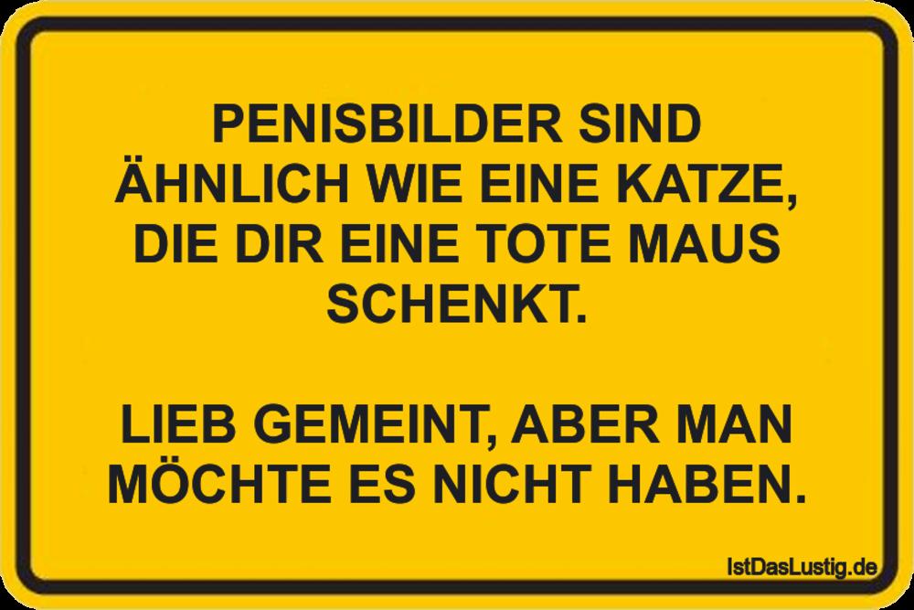 Lustiger BilderSpruch - PENISBILDER SIND ÄHNLICH WIE EINE KATZE, DIE...