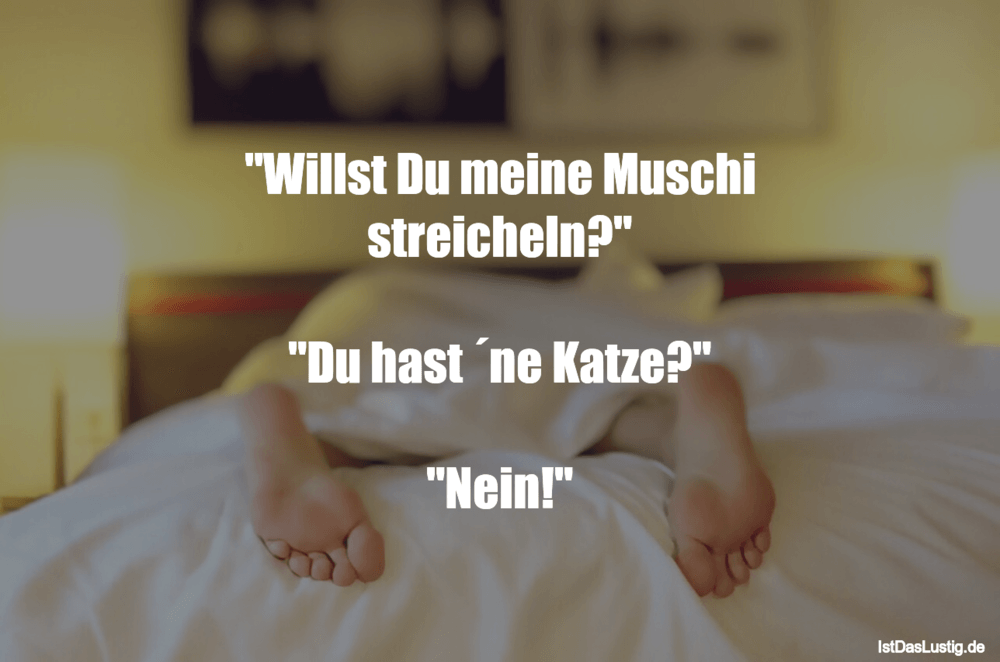 """Lustiger BilderSpruch - """"Willst Du meine Muschi streicheln?""""  """"Du hast ..."""