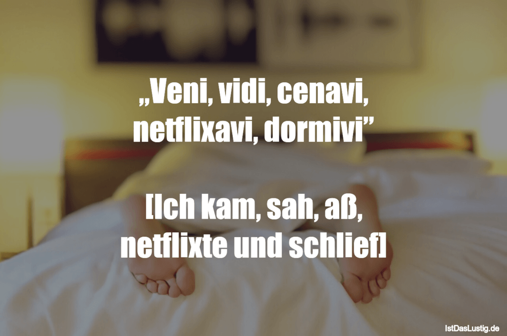 "Lustiger BilderSpruch - ""Veni, vidi, cenavi, netflixavi, dormivi""  [Ich..."