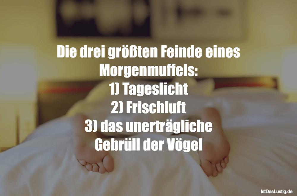 Lustiger BilderSpruch - Die drei größten Feinde eines Morgenmuffels: 1)...