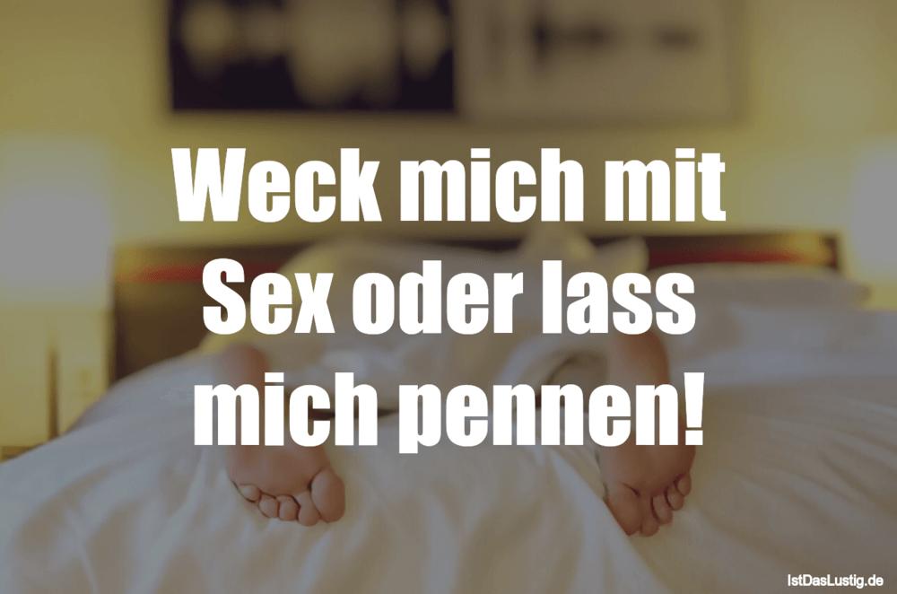 Lustiger BilderSpruch - Weck mich mit Sex oder lass mich pennen!