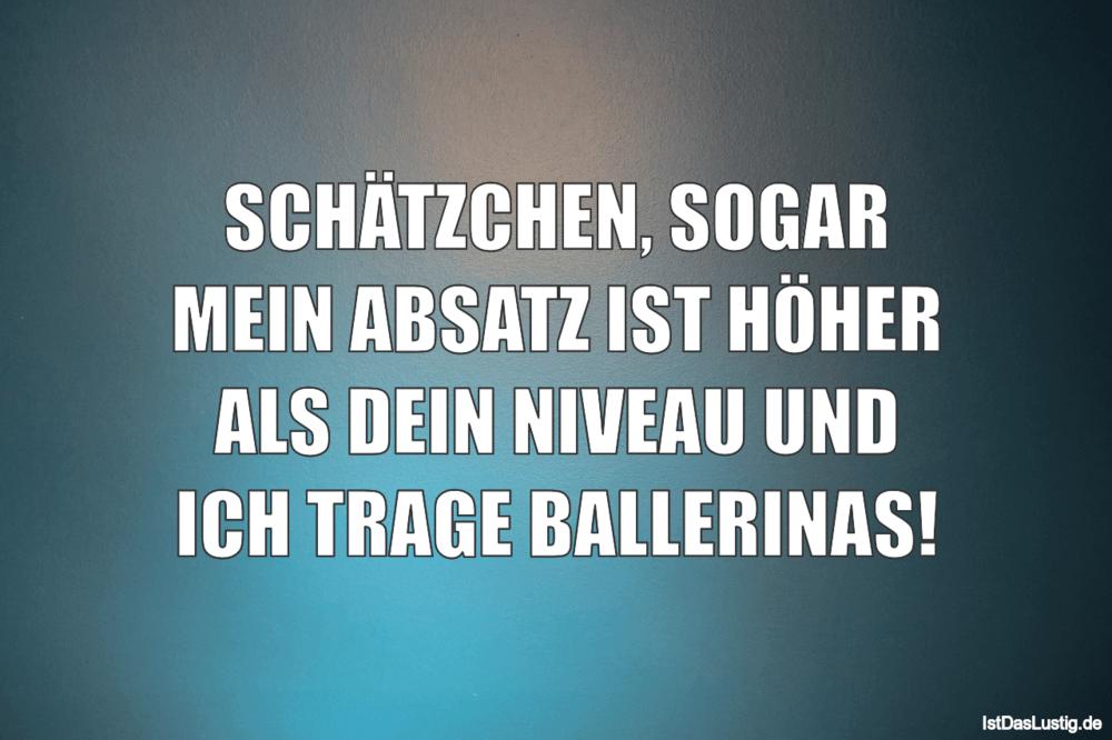Lustiger BilderSpruch - SCHÄTZCHEN, SOGAR MEIN ABSATZ IST HÖHER ALS...