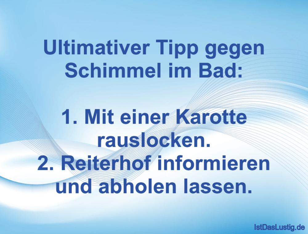 Lustiger BilderSpruch - Ultimativer Tipp gegen Schimmel im Bad:  1. Mit...