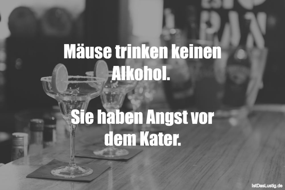 Lustiger BilderSpruch - Mäuse trinken keinen Alkohol.   Sie haben Angst...