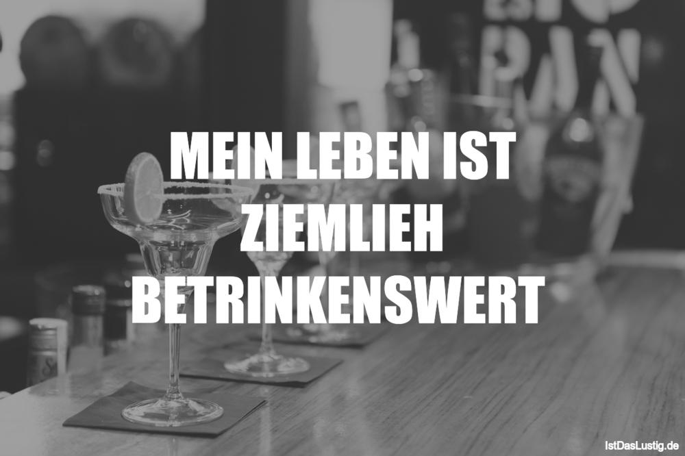 Lustiger BilderSpruch - MEIN LEBEN IST ZIEMLIEH BETRINKENSWERT