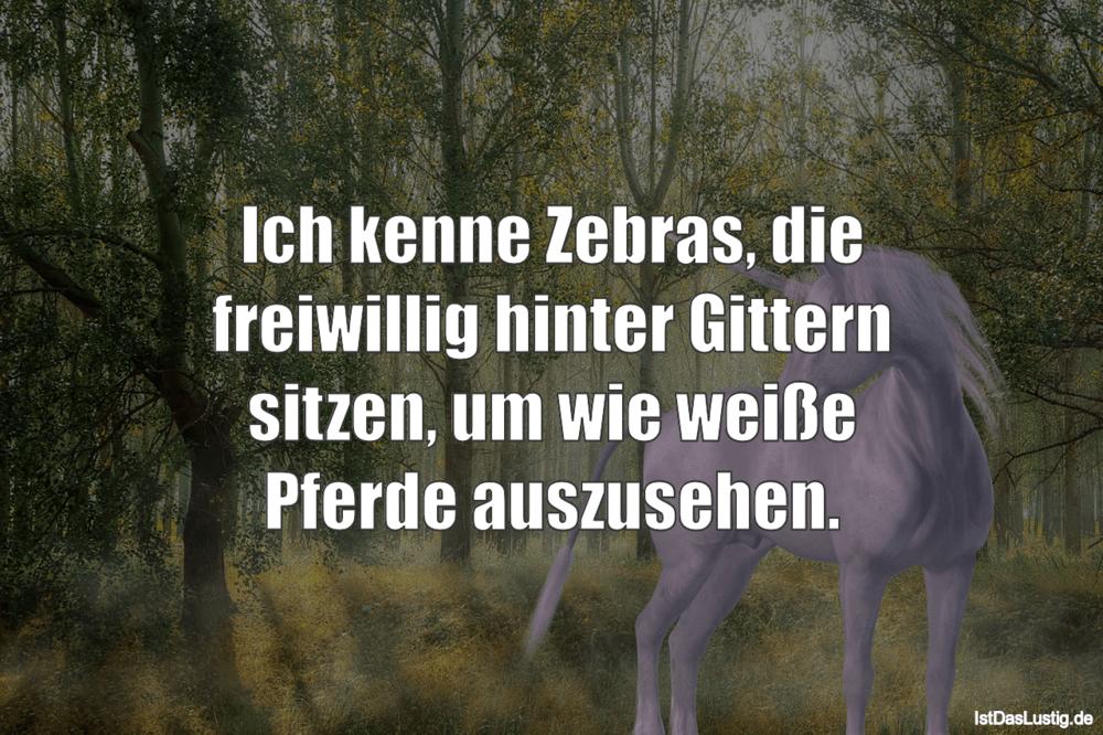 Lustiger BilderSpruch - Ich kenne Zebras, die freiwillig hinter Gittern...