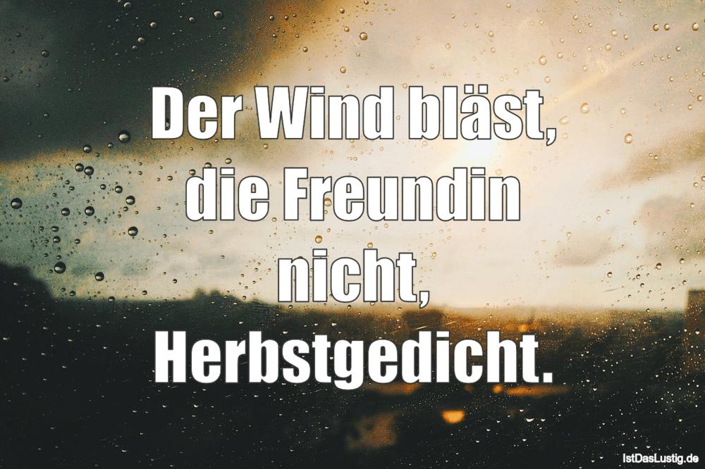 Lustiger BilderSpruch - Der Wind bläst, die Freundin nicht, Herbstgedicht.