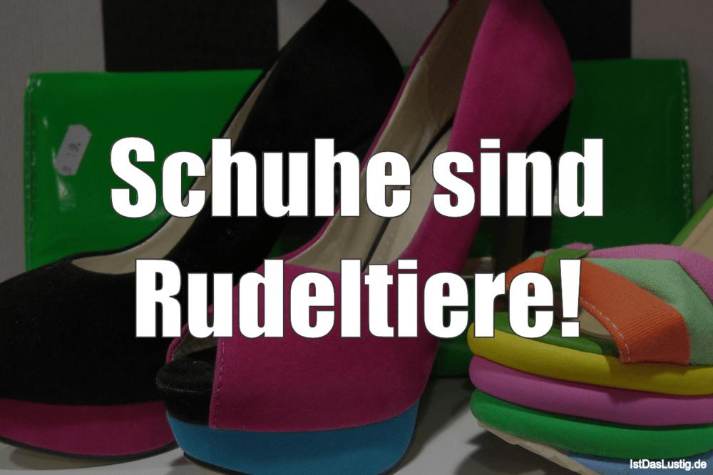 Lustiger BilderSpruch - Schuhe sind Rudeltiere!