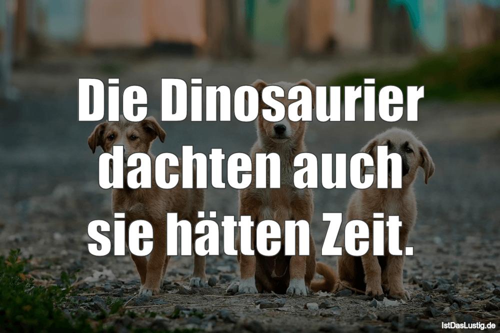 Lustiger BilderSpruch - Die Dinosaurier dachten auch sie hätten Zeit.