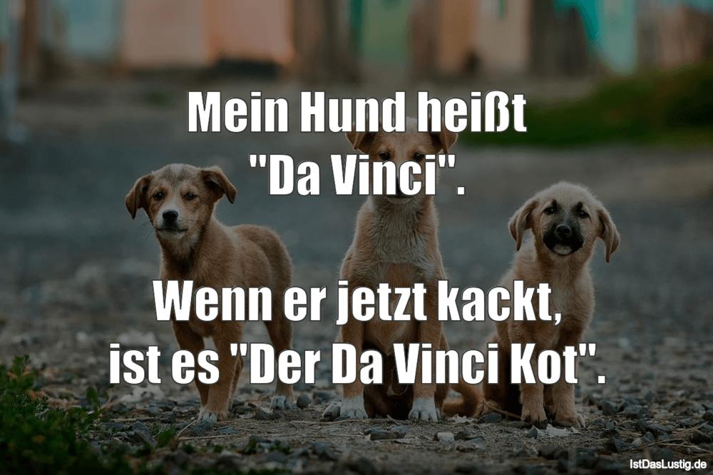 Die Besten 34 Hund Spruche Auf Istdaslustig De