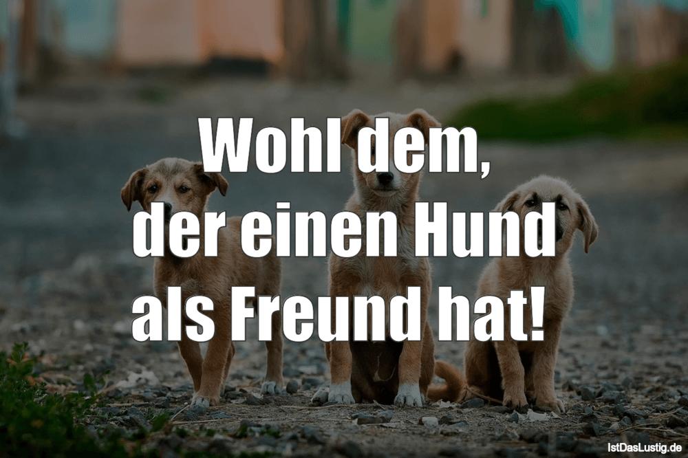 Lustiger BilderSpruch - Wohl dem, der einen Hund als Freund hat!