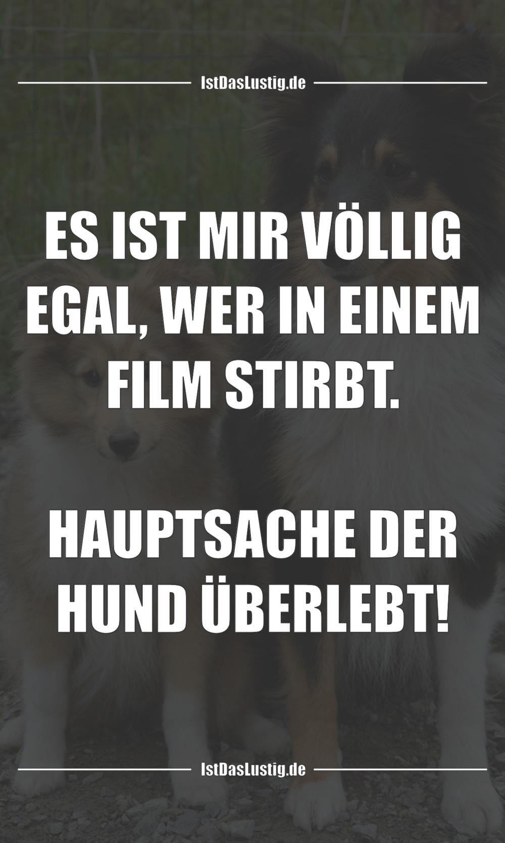 Lustiger BilderSpruch - ES IST MIR VÖLLIG EGAL, WER IN EINEM FILM...