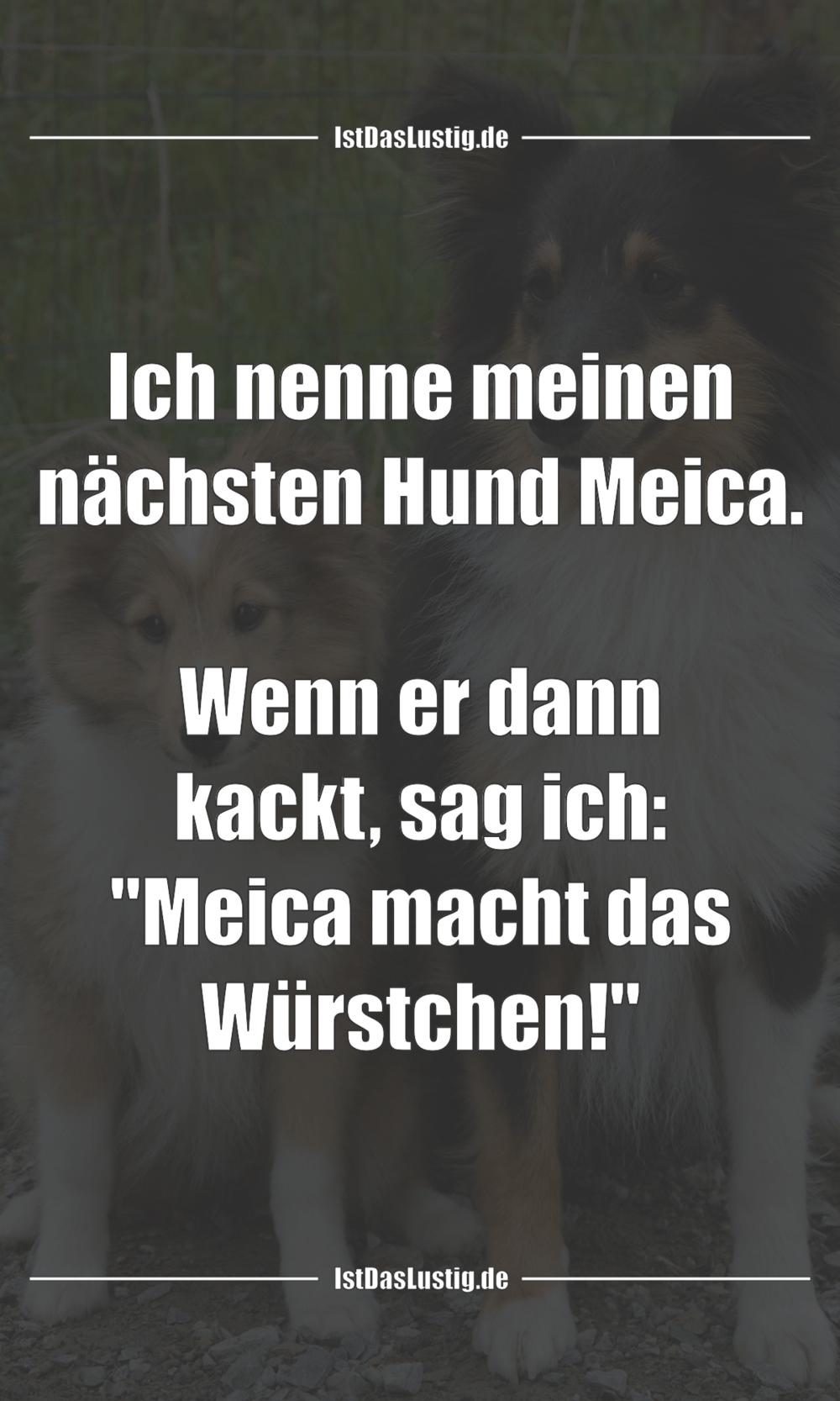 Lustiger BilderSpruch - Ich nenne meinen nächsten Hund Meica.  Wenn er...