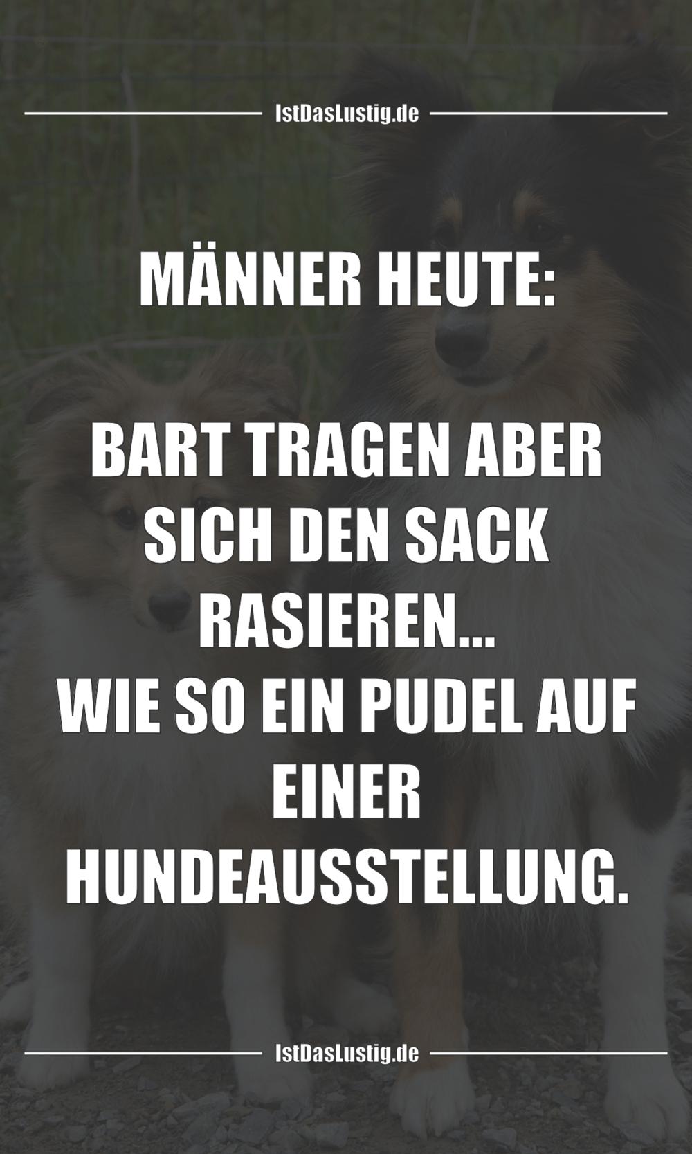 Lustiger BilderSpruch - MÄNNER HEUTE:  BART TRAGEN ABER SICH DEN SACK...