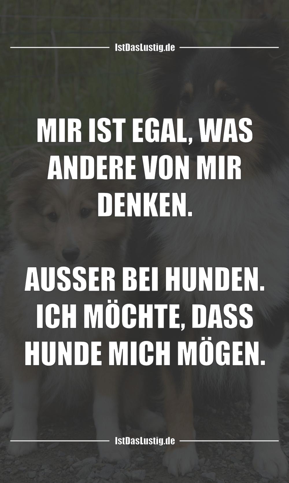 Lustiger BilderSpruch - MIR IST EGAL, WAS ANDERE VON MIR DENKEN.  AUSSE...
