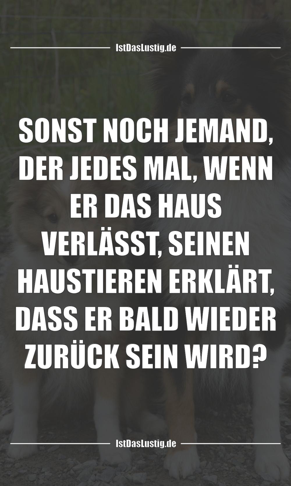 Lustiger BilderSpruch - SONST NOCH JEMAND, DER JEDES MAL, WENN ER DAS...