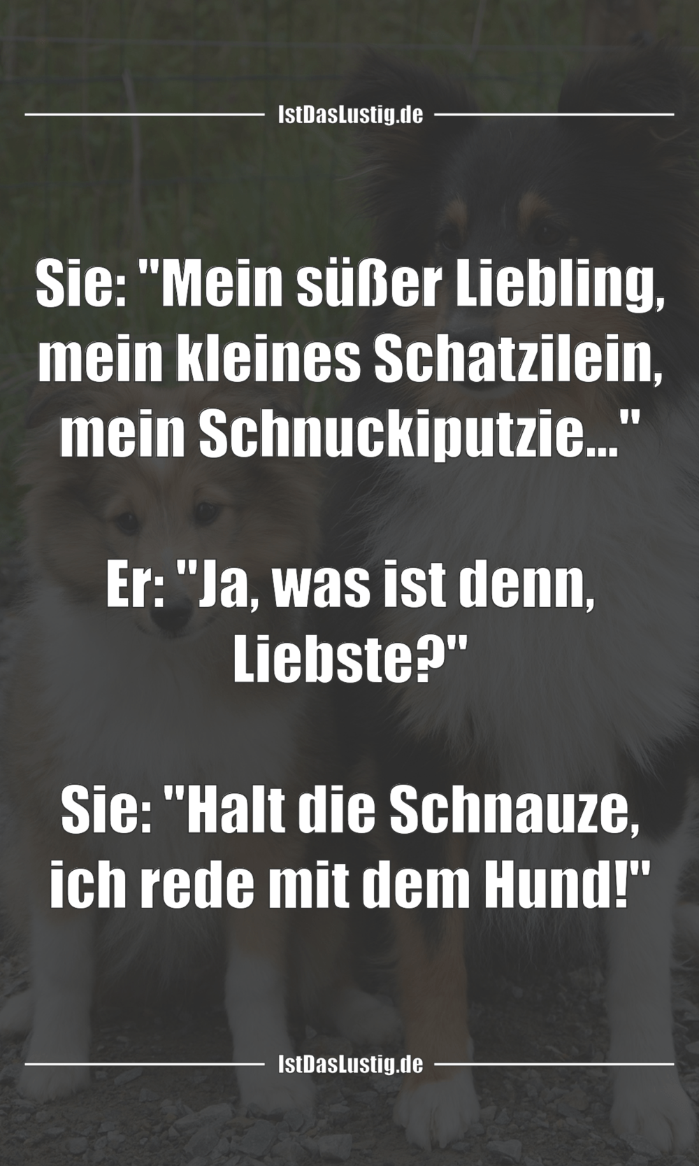 """Lustiger BilderSpruch - Sie: """"Mein süßer Liebling, mein kleines..."""