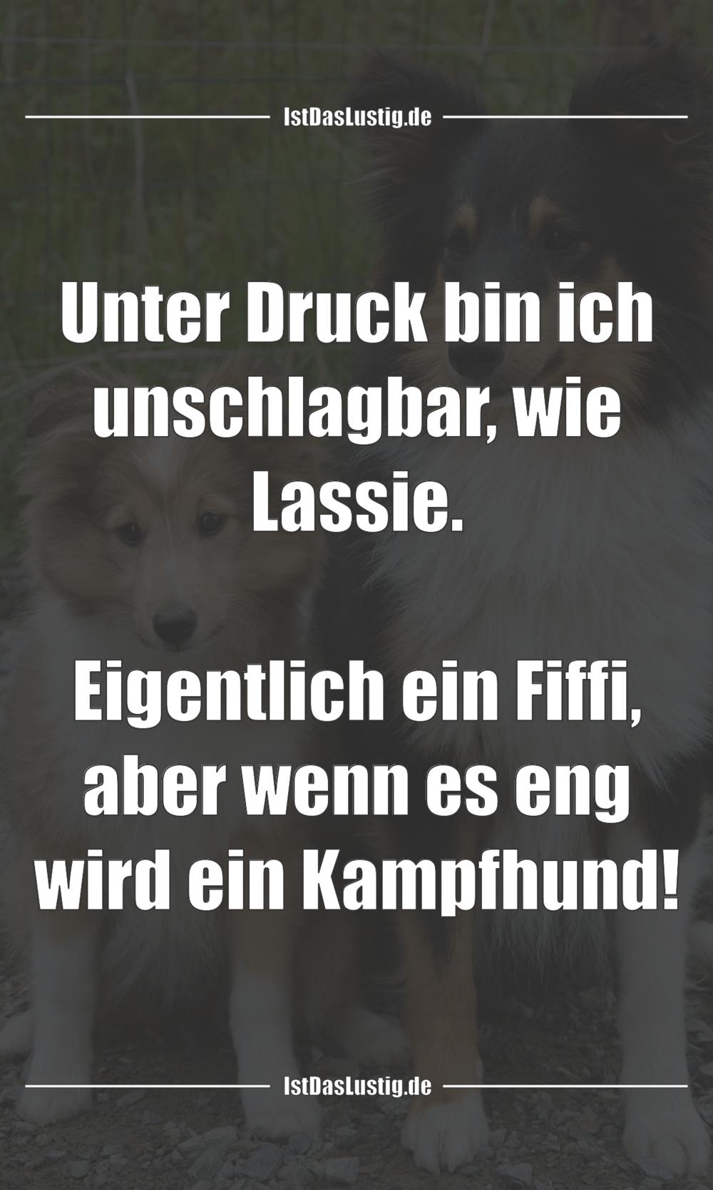 Lustiger BilderSpruch - Unter Druck bin ich unschlagbar, wie Lassie....