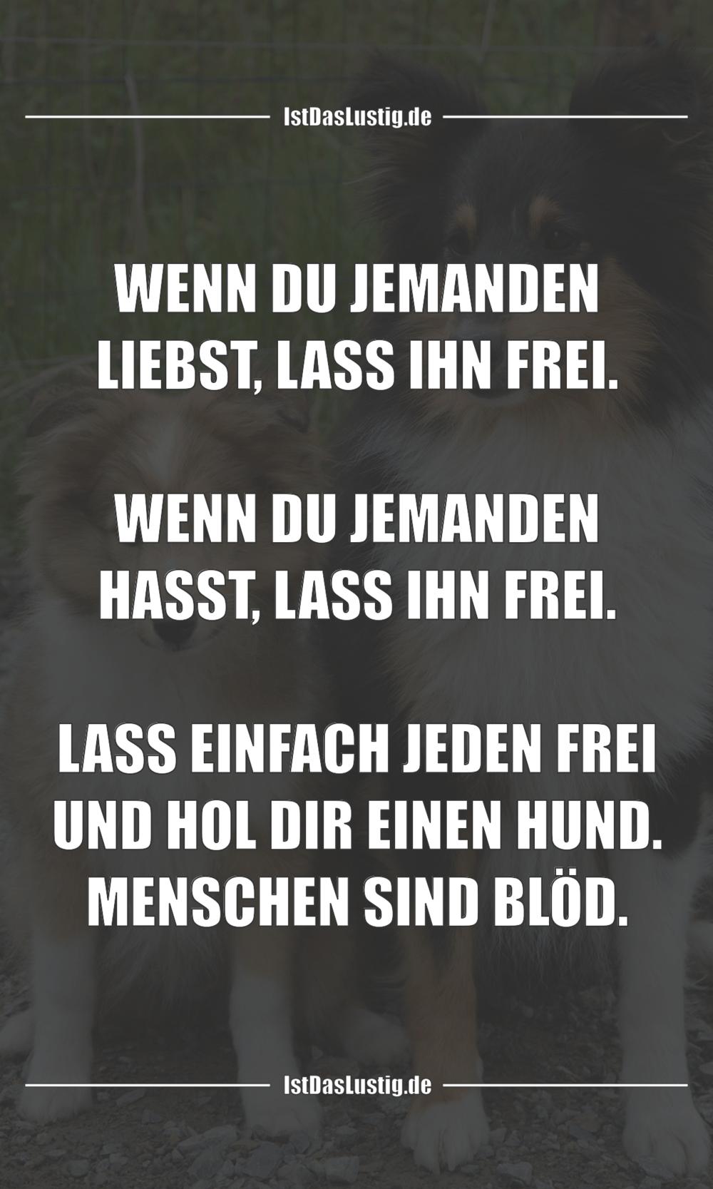 Lustiger BilderSpruch - WENN DU JEMANDEN LIEBST, LASS IHN FREI.  WENN...