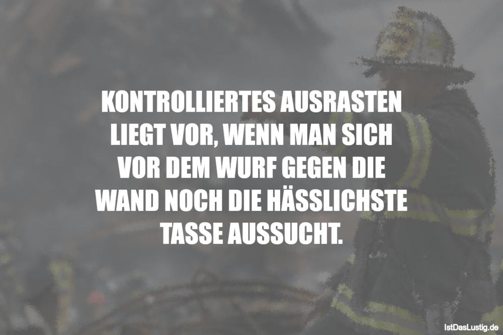 Lustiger BilderSpruch - KONTROLLIERTES AUSRASTEN LIEGT VOR, WENN MAN...
