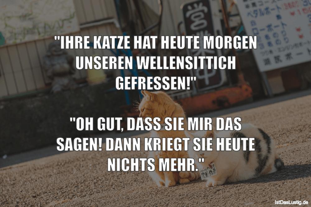 """Lustiger BilderSpruch - """"IHRE KATZE HAT HEUTE MORGEN UNSEREN WELLENSITT..."""