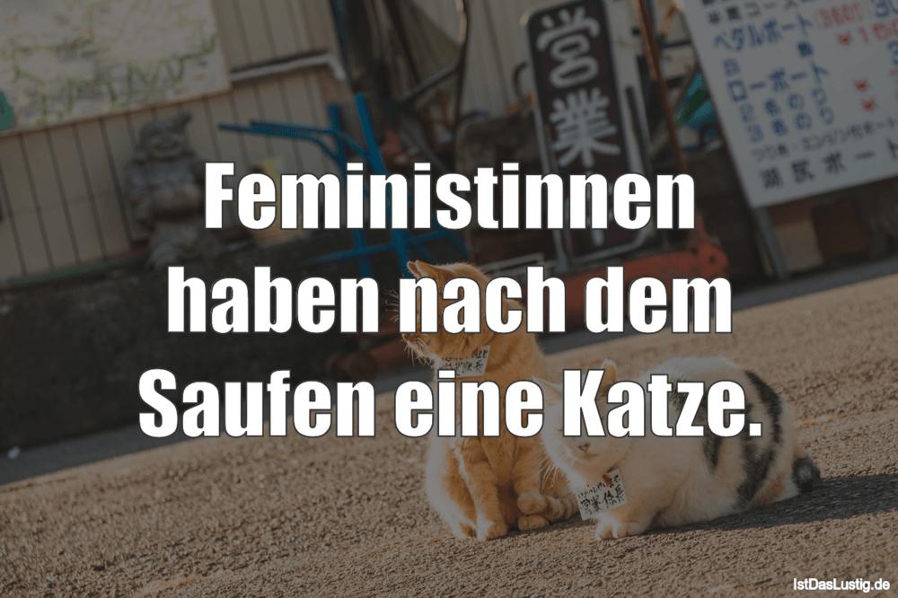 Lustiger BilderSpruch - Feministinnen haben nach dem Saufen eine Katze.