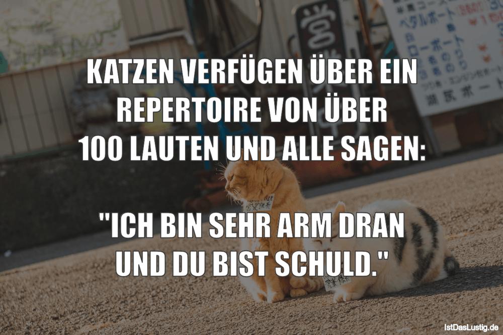 Lustiger BilderSpruch - KATZEN VERFÜGEN ÜBER EIN REPERTOIRE VON ÜBER...