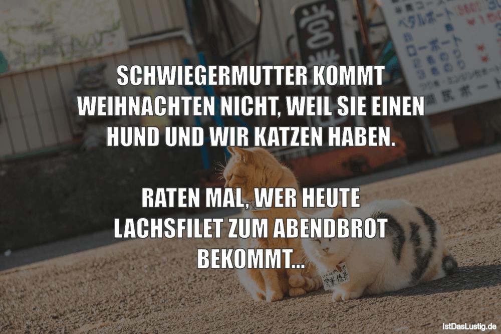 Lustiger BilderSpruch - SCHWIEGERMUTTER KOMMT WEIHNACHTEN NICHT, WEIL...