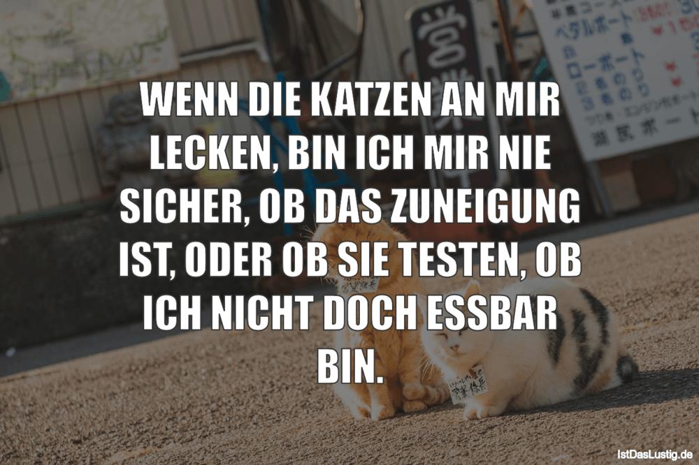 Lustiger BilderSpruch - WENN DIE KATZEN AN MIR LECKEN, BIN ICH MIR NIE...