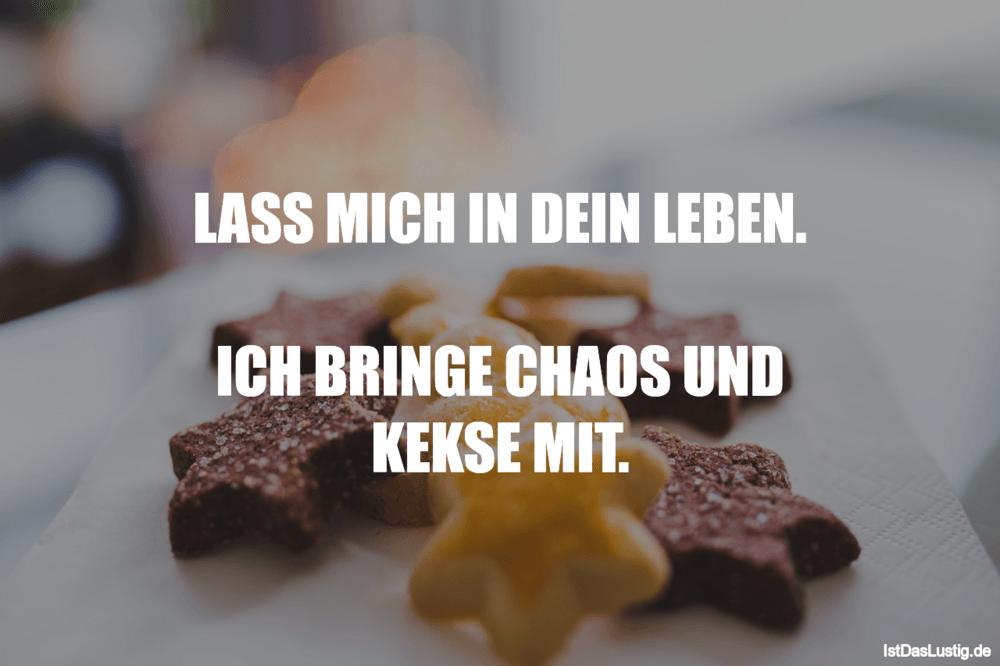 Lustiger BilderSpruch - LASS MICH IN DEIN LEBEN.  ICH BRINGE CHAOS UND...