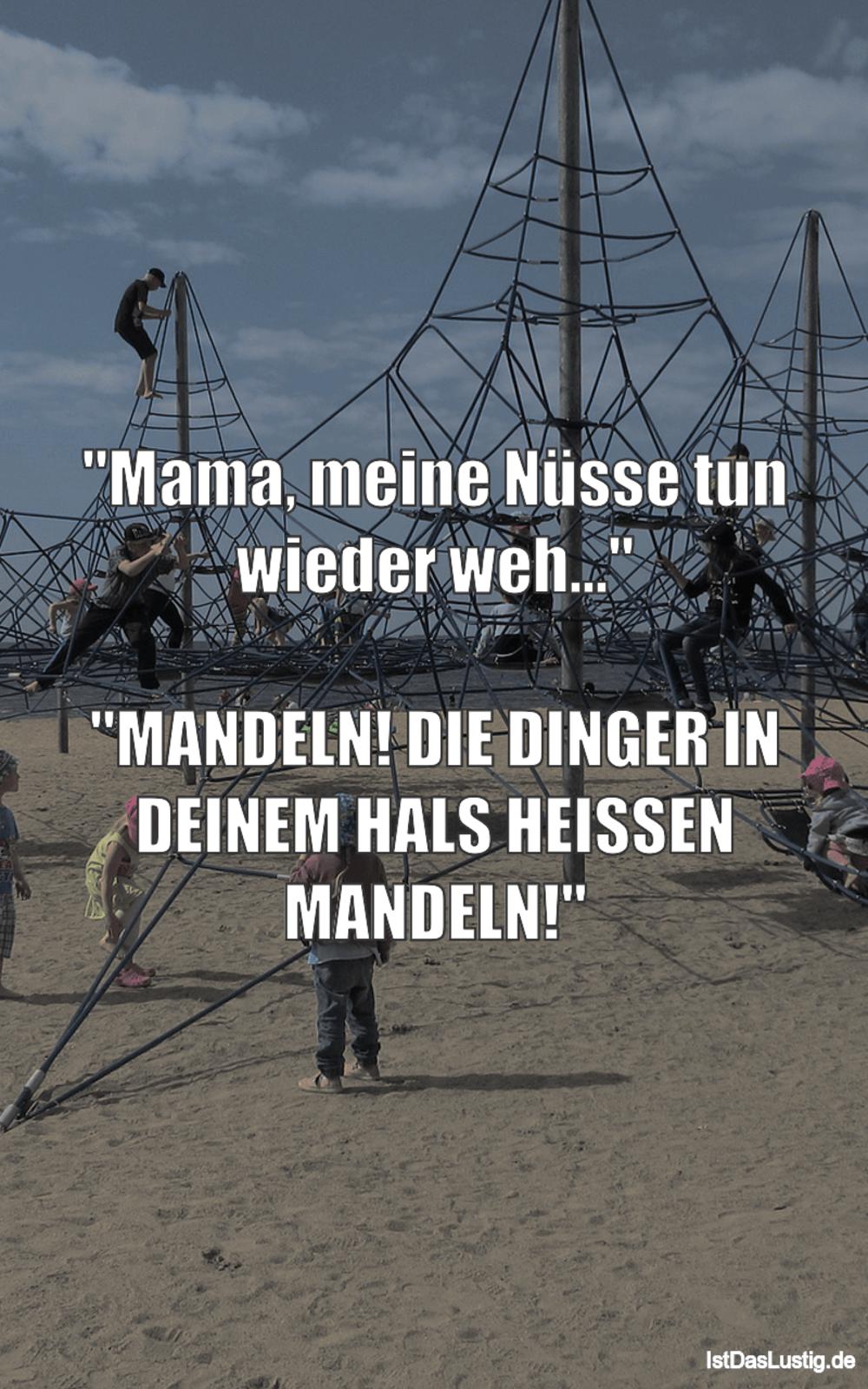 """Lustiger BilderSpruch - """"Mama, meine Nüsse tun wieder weh...""""..."""
