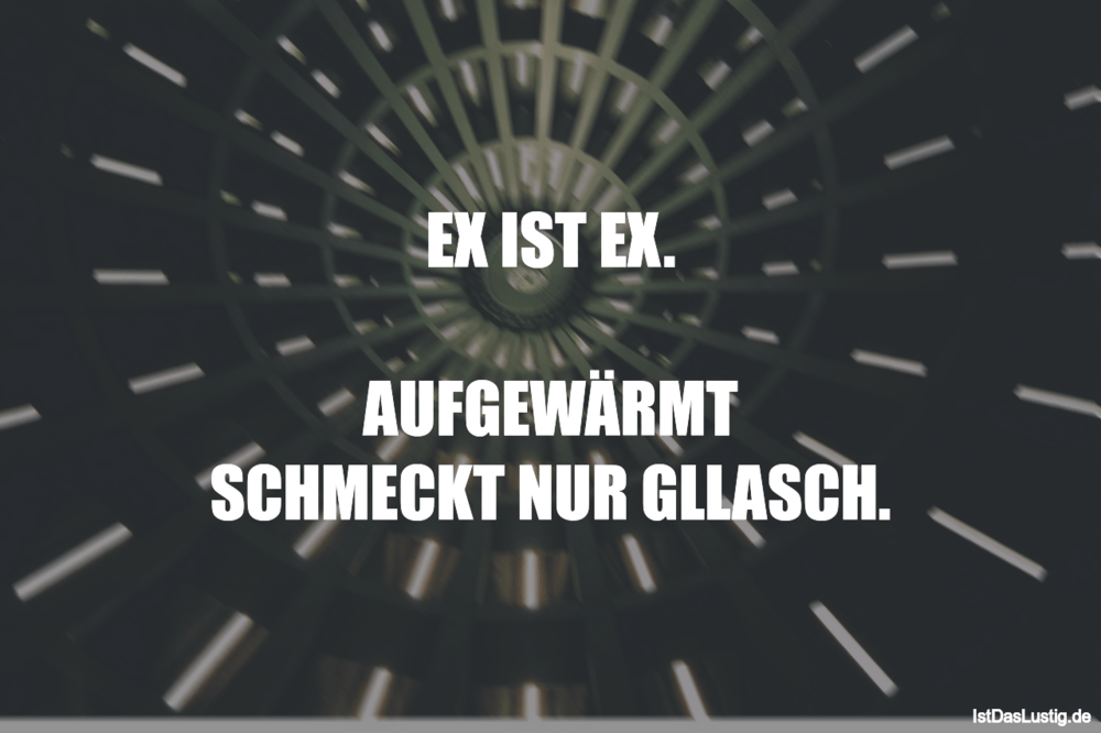 Lustiger BilderSpruch - EX IST EX.  AUFGEWÄRMT SCHMECKT NUR GLLASCH.