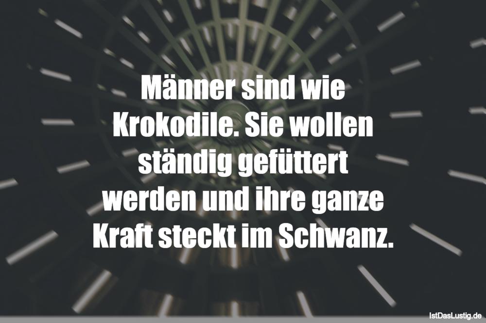 Die besten 122+ Männer Sprüche auf IstDasLustig.de