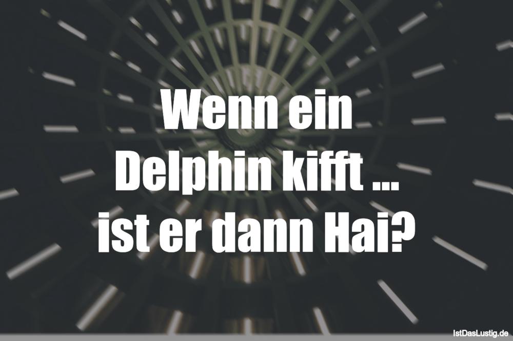 Lustiger BilderSpruch - Wenn ein Delphin kifft ... ist er dann Hai?
