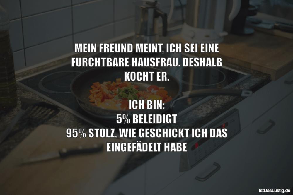Lustiger BilderSpruch - MEIN FREUND MEINT, ICH SEI EINE FURCHTBARE...