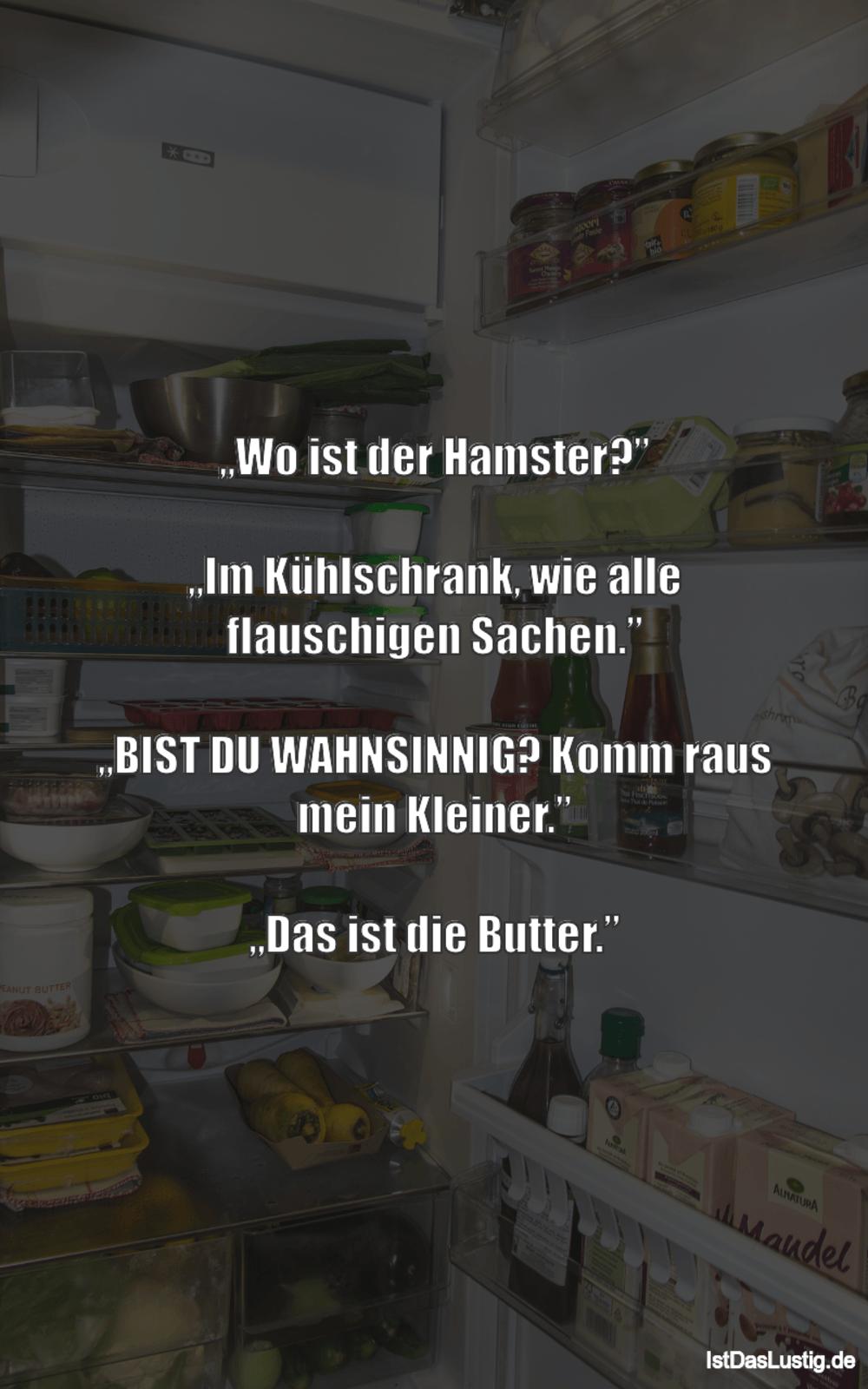 """Lustiger BilderSpruch - """"Wo ist der Hamster?""""  """"Im Kühlschrank, wie..."""