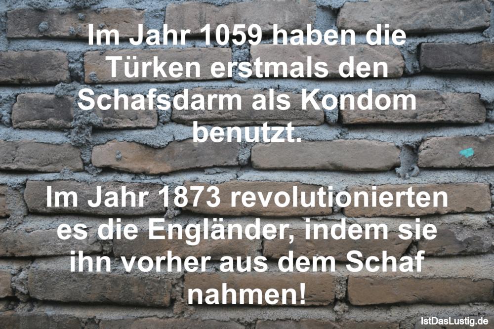Lustiger BilderSpruch - Im Jahr 1059 haben die Türken erstmals den...