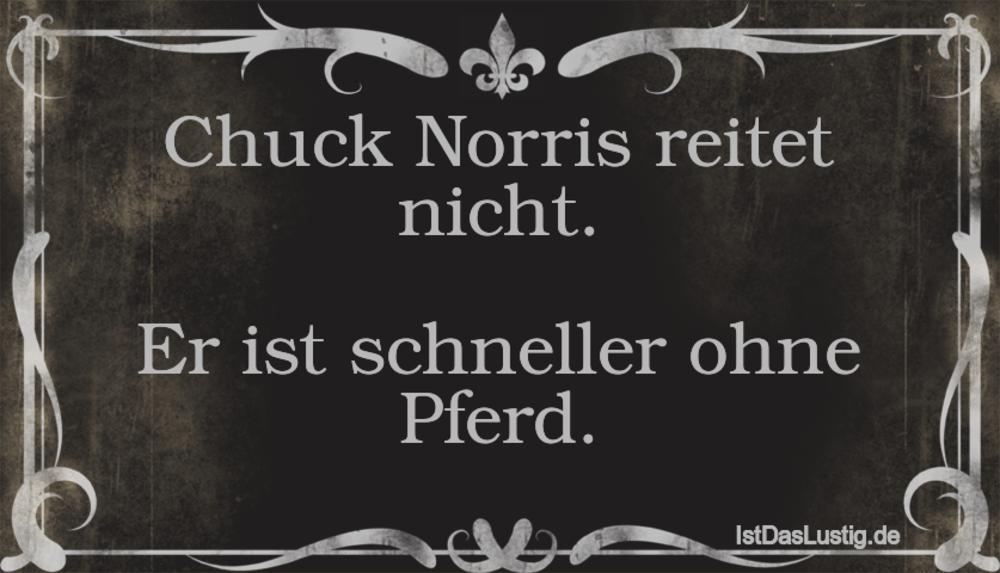 Lustiger BilderSpruch - Chuck Norris reitet nicht.  Er ist schneller...