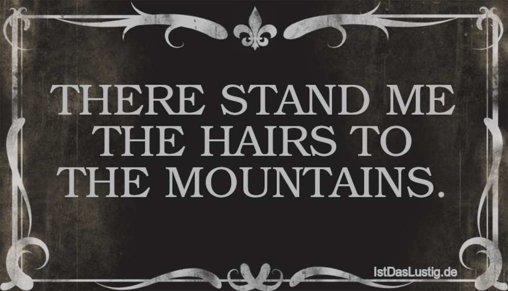 Lustiger BilderSpruch - THERE STAND ME THE HAIRS TO THE MOUNTAINS.