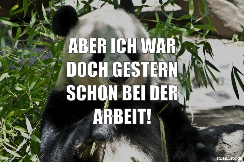 Lustiger BilderSpruch - ABER ICH WAR DOCH GESTERN SCHON BEI DER ARBEIT!