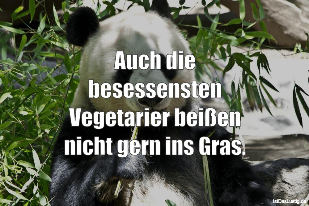 Lustiger BilderSpruch - Auch die besessensten Vegetarier beißen nicht...